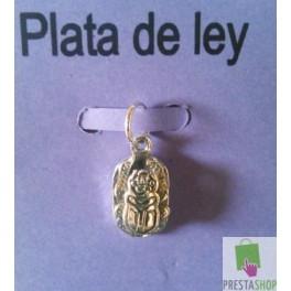 Amuleto Escarabajo de plata de ley